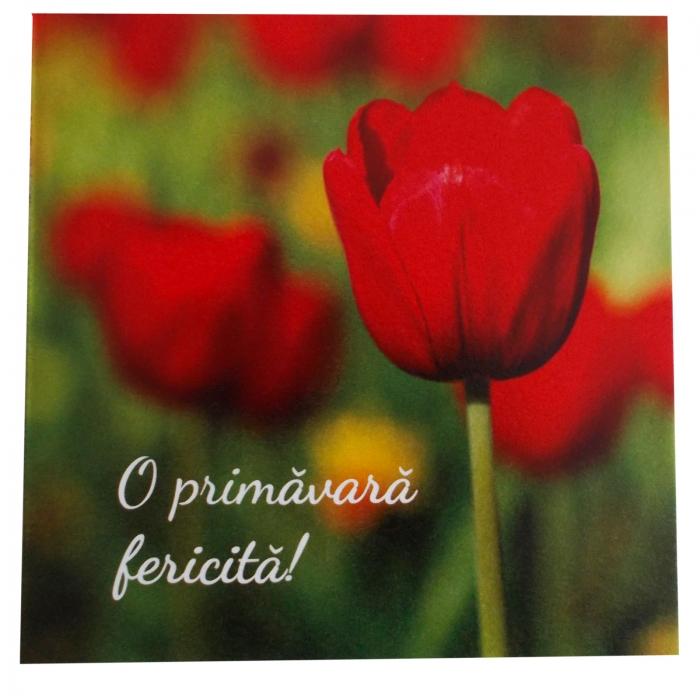 Felicitare martie lalea rosie 1