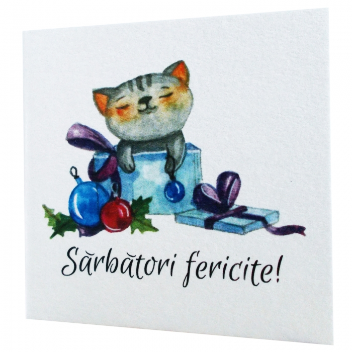 Minifelicitari Craciun pisica 2