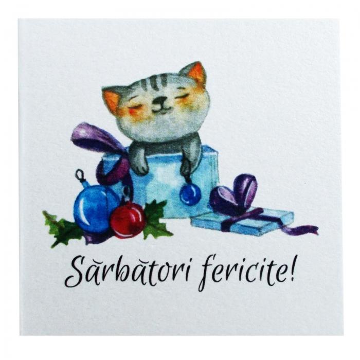 Minifelicitari Craciun pisica 3