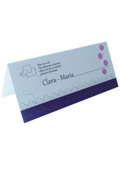 PLACE CARD BOTEZ ELEFANTEL1