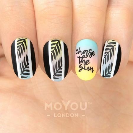 MoYou Tropical 372