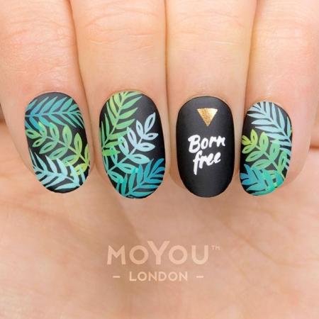 MoYou Tropical 36