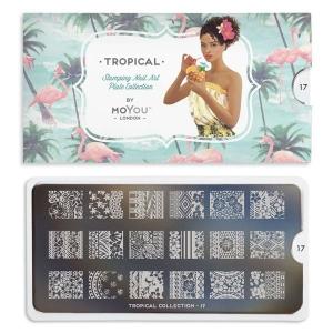 MoYou Tropical 17