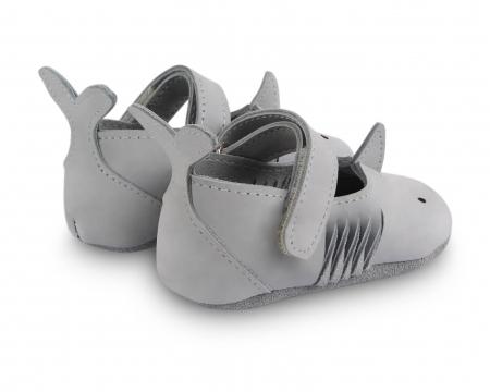 Amigu shark2