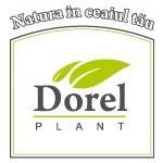 Dorel Plant