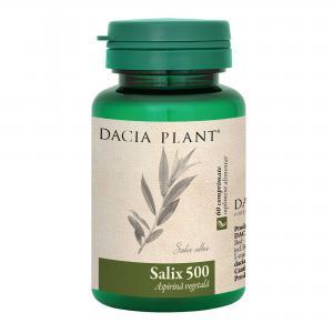 Salix 500 60 cpr Dacia Plant