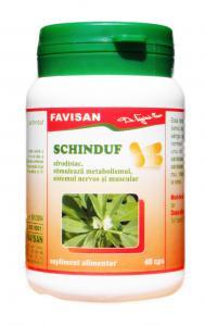 Schinduf Tonic General, Depurativ 40 cps Favisan