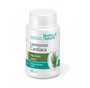 Leonurus Cardiaca Talpa Gastei Extract 30 cps Rotta Natura