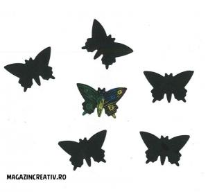 Fluturi curcubeu