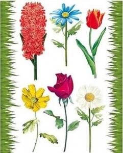 Autocolant static pentru fereastră flori colorate