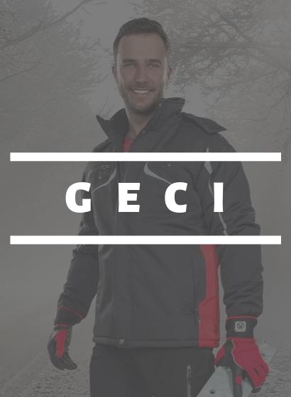 Banner mic principal | Geci