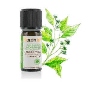 Ulei esential camfor frunze BIO 10ml sau dafin salbatic Cinnamomum camphora