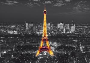 Fototapet Turnul Eiffel FTS 1316
