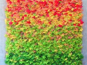 Fototapet Covor de Frunze