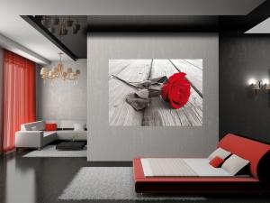 Fototapet Trandafir Rosu FTM 08191