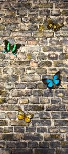 Fototapet Fluturi pe Zid de Piatra
