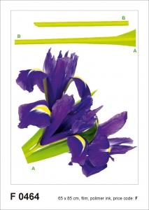 Sticker Iris Violet - 65x85cm - F0464