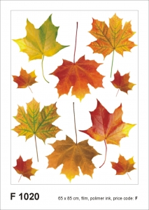Sticker Frunze de Artar - Maple Leaves - 65x85cm - F1020