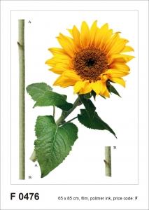 Sticker Floarea Soarelui - Sun flower - 65x85cm - F0476