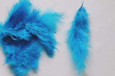 Pene decor albastru turcoaz (5g)