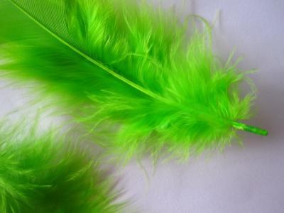 Pene decor verde deschis (5g)