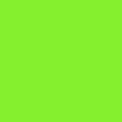 Decorcauciuc catifea A4 verde deschis