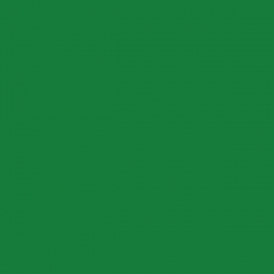Decorcauciuc catifea A4 verde