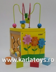 Cub educativ 5 in 1 Active Sun KABI5