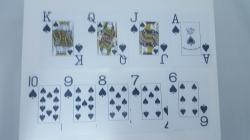 Carti de joc 100% plastic, jumbo index - double deck1