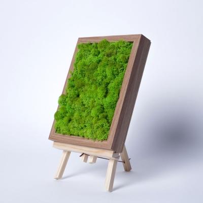 Rama Licheni 18 x 24 Verde Spring0
