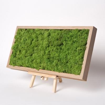 Tablou Licheni 23 x 50 Verde Forest0