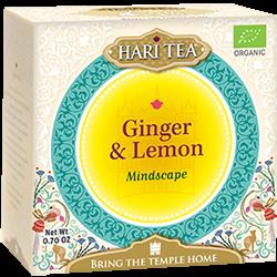 Ceai premium Bio Hari Tea - Mindscape - ghimbir si lamaie