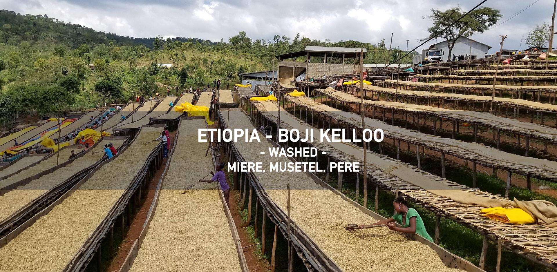 Etiopia Boji