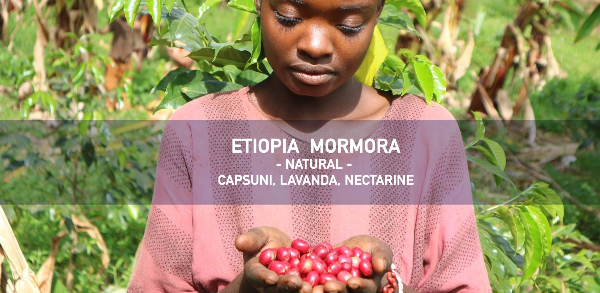 etiopia mormora