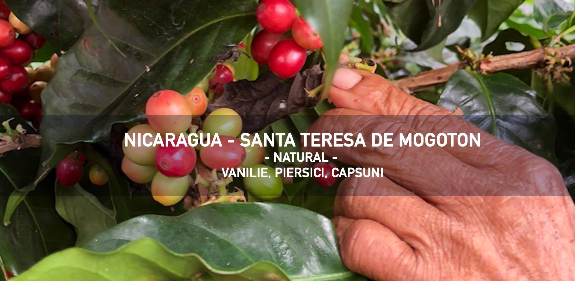 nicaragua-santa-teresa-de-mogoton