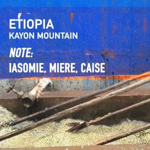 Etiopia - Kayon Mountain, Cafea de Specialitate