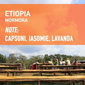 Etiopia - Mormora, Cafea de Specialitate