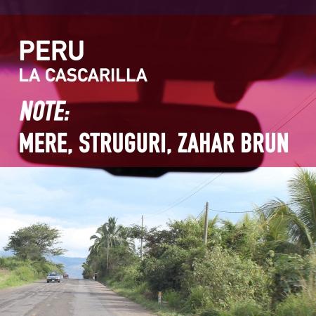 Peru La Cascarilla - Cafea de Specialitate