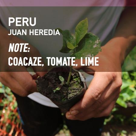 Peru - Juan Heredia