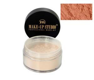 Pudra Profesionala Translucenta Extra Fina Make-Up Studio 15 gr-030