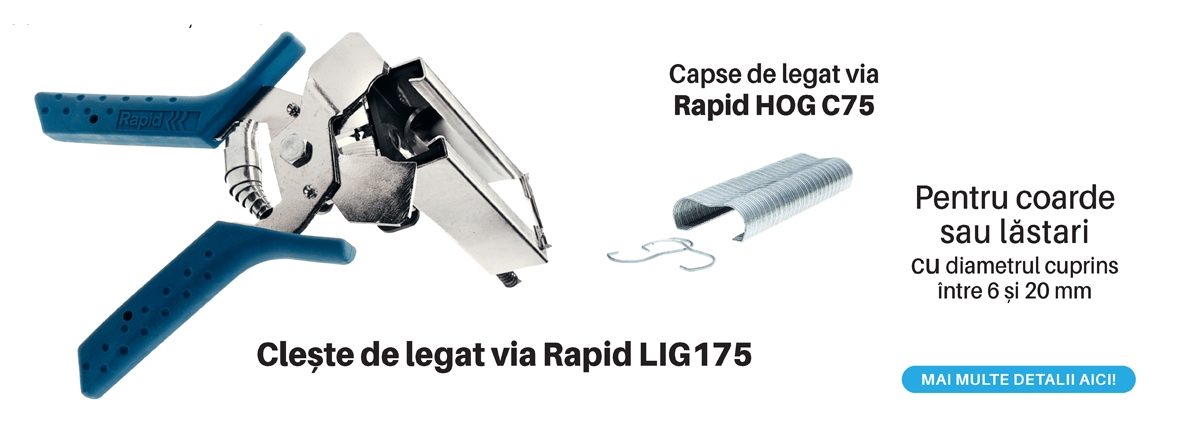 Banner Lig 175 - cleste legat via si capse Rapid
