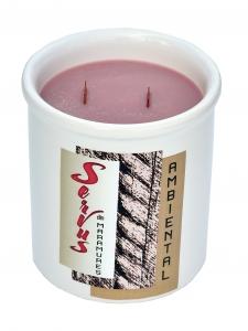 Lumanare Parfumata AMBIENTAL, cu 2 fitile din lemn0