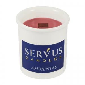 Set 4 Lumanari Parfumate AMBIENTAL, cu fitil din lemn1