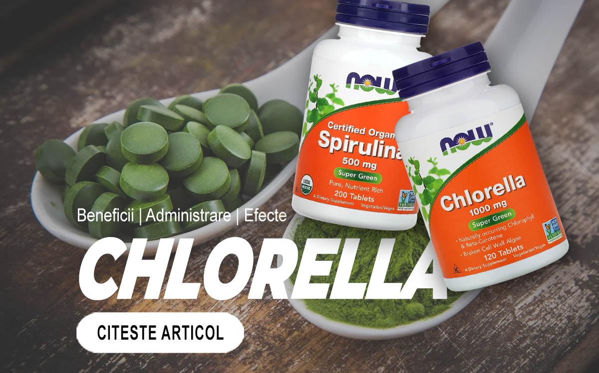 CHLORELLA - Tot ce trebuie sa stii despre aceste alge miraculoase