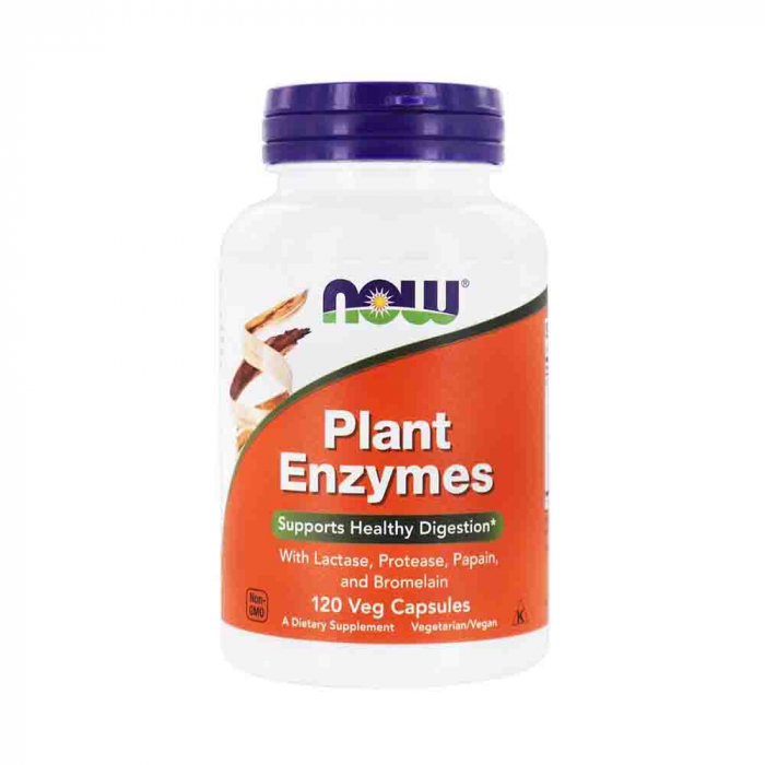 plant-enzymes-now-foods 0