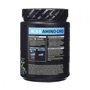 BCAA Amino-Gro, USN, 300g1