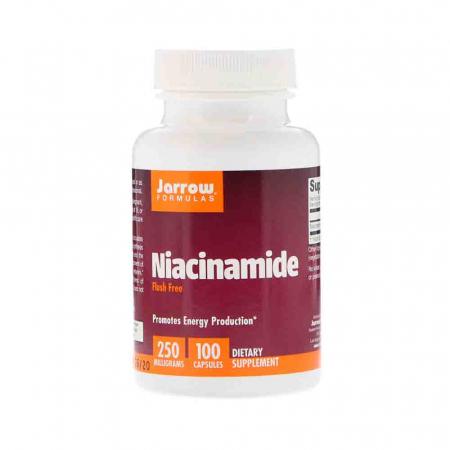 Niacinamide Vitamina B3 (Flush Free) 250mg, Jarrow Formulas, 100 capsule0