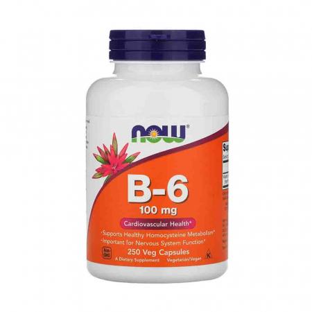 Vitamina B-6 (Piridoxina), 100mg, Now Foods0
