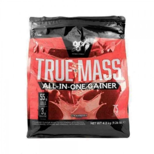 True Mass All-in-One Gainer, BSN, 4.2Kg