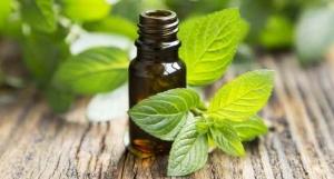Ulei din 36 plante medicinale, 10 ml
